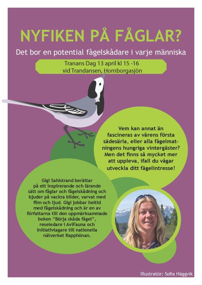 Affisch Transdansen