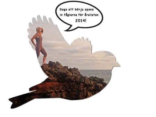 årslista-2014-hemsida