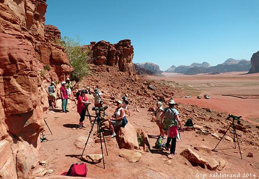 1 P1080657 Wadi Rum