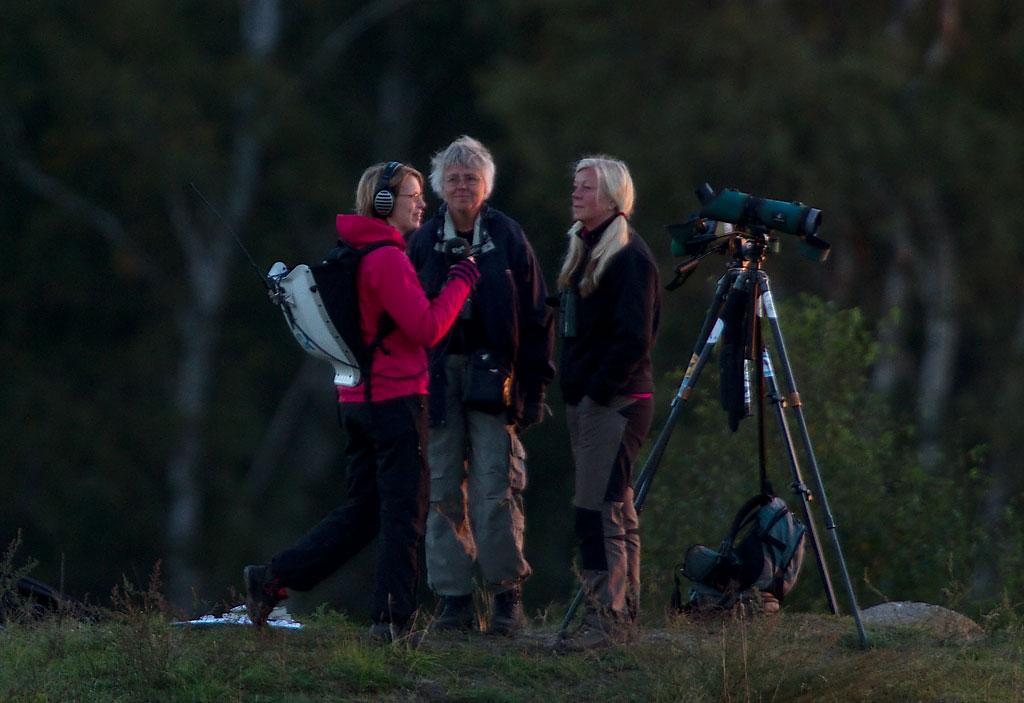 """Jag och Eva är med i radion """"Naturmorgon"""", ang vårt boksläpp under Falsterbo Bird Show 2010."""