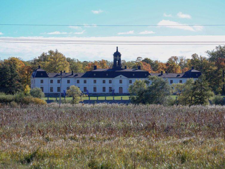 Möt fåglarna vid Svartsjö slott!