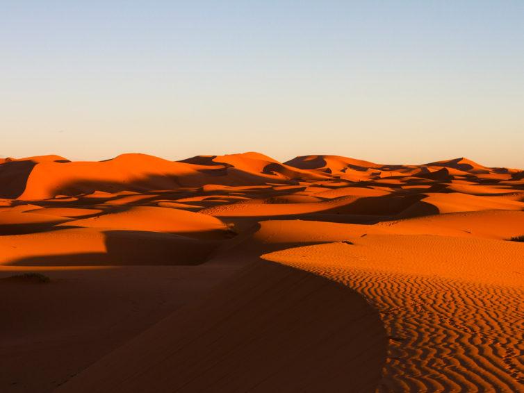 Marocko (södra)</br>13-22 november 2020